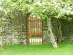 Gothic Garden gate with apple blossom