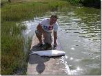 Tarpon fishing - catch and release