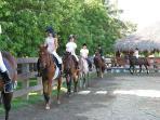 esquestrian ranch