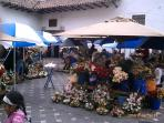 Flower Market across from Cathedral