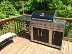 5 Burner Gas Grill with searing tray - this grill will cook a king's feast