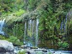 Mossbrae Falls lies in Dunsmuir's city limits, & Hedge Creek Falls does as well