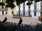 Town Hall square, nearby Motril