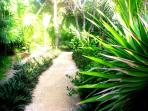 Riviera Maya B&B - Path Thur the Tropical Garden to your Private Entrance