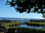 view of hilo bay from tidepools