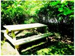 Picnic Bench in Front Yard