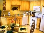 Panama City Beach Splash Kitchen with Granite Top