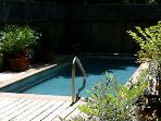 pool surrounded by deck and plantings