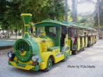 The train tours the spa park and woods