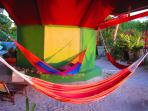 Hammocks under the house
