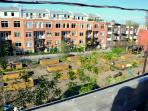 View of the rooftop terrasse: community gardens