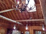 Beautiful Antlers Chandelier