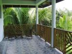 Private Back Deck of Harpy Eagle Cabin