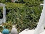 Luxuriant large garden