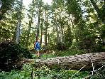 Area Hike