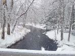 Trout Creek in Arrowhead Lake