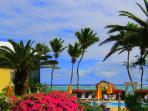 Tropical Plantings surround our Pool with our Balcony & Sea in the Distance
