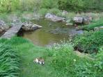 Nature pure au Moulin de Record, le BEZ/Ferrières, Tarn, Midi-Pyrénées, paradis de pêche + rando