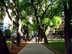 Plaza Vicente Lopez - The most elegant park in town