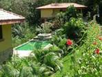 Swimming Pool surrounded by gardens and jungle. Perfect for relaxing and animal watching!