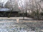 Winter in B&B Schaepsgerwe