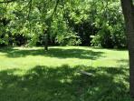 Lovely grassy riverbank