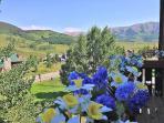 View of the Elk mtn range & Maroon Bells off the Mountain Bedroom's deck.