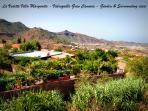 La Vedette Villa Margarita Gran Canaria Garden Villa View