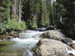 The Beautiful Roaring Creek in the backyard