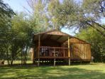 Syringa Berry Log Cabin