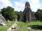 Tikal _Belize Tour, Bella Sombra Guest House