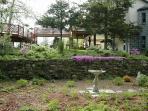 Stone wall garden in spring