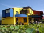 Casa de Angie lotus pond