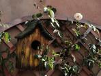 The garden of La casa nel Borgo