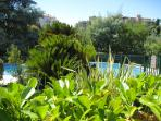 A glimpse of the pool from our private garden