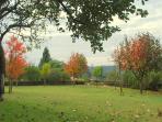 Garden View - November 2011