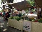 Fair of organic products on saturday morning