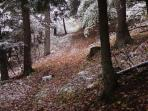 Mountain trail with snow, love walking on the trails with this light dusting!