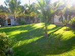 Beautiful back garden