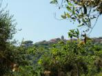Villa Marinella - Monte Cicerale - Cilento - www.marinellacilento.it