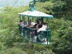 Canopy tram