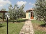 26063-Holiday house Livorno