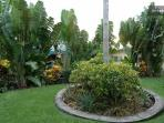Part of Side Yard by Guest House