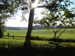Hampshire on a sunny day