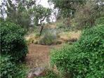Garden, Relva da Moura