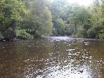big river, 80 feet across