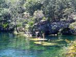 Cenote Jardines del Eden, 25 min drive north of Tulum