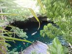 Gran Cenote- 10 min drive from Villa W6 in Tulum