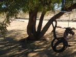Horsy swing under a shade tree - perfect for the little ones.