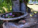 Farmhouse Bird bath you'll have to add some water